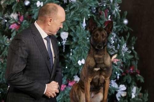 Неожиданно! Дубровский поздравил южноуральцев вместе с полицейской собакой